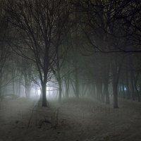 Таинственный свет :: Денис Масленников