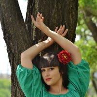 Лесные истории :: Олеся Стоцкая