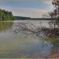 на озере :: Дмитрий Анцыферов