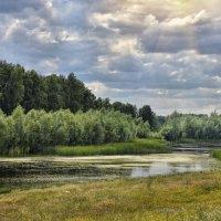 Озеро Москвичево :: Дмитрий Конев