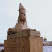 ВЕСНА НАД ПИТЕРОМ :: Николай Гренков