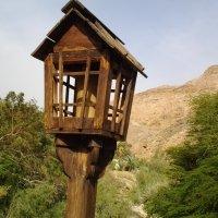 Маяк для  заблудившихся в горах. :: Жанна Викторовна