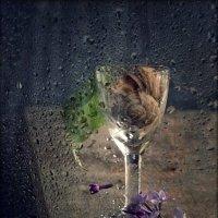 Дождливое настроение :: Ольга Мальцева