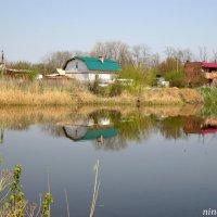 Пруд в Ковалёвке :: Нина Бутко