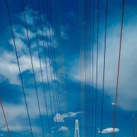 Вантовый мост :: SergeuBerg