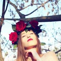 Red Beauty :: Райская Птица