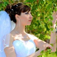 Красивая невеста :: Дмитрий Фотограф
