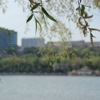 С левого берега Дона, 03.05.2015 :: Леонид