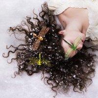Стрекозы в снегу :: Дарья Сивачук