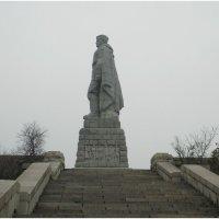 Алеша :: Елена Миронова