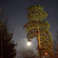 Луна :: Игорь Лобанов