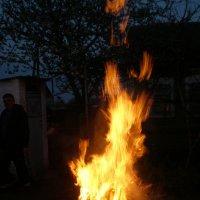 Танец огня :: Татьяна Пальчикова