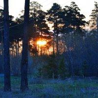 Ранним утром :: Алексей http://fotokto.ru/id148151Морозов