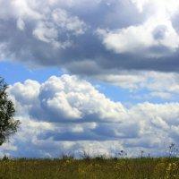 Летом :: оля san-alondra