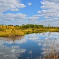 Весенний пруд :: Юрий
