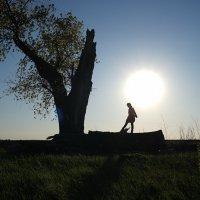 Девочка и солнце :: Ирина Остроухова