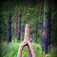 Лесной сторож :: Андрей Заломленков