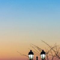 закат :: Ирина Асеева