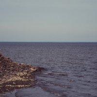 Финский залив :: Дарья Рева