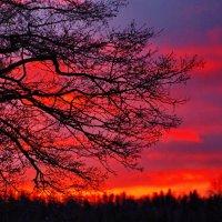 рассвет в Суоми :: Ingwar