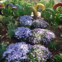 Разноцветная весна :: Нина Корешкова
