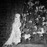 стена :: Тамара Тайсумова