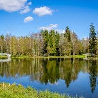 Гатчинский парк :: Алёнка Шапран
