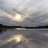 Полет над озером :: Сергей Быстров