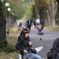 Птица... :: Олег Гудков