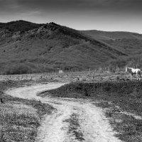 Путь :: Сергей Леонтьев