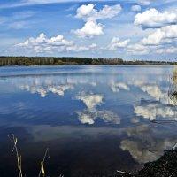 Залив :: Алексей Дмитриев