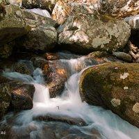 Река в урочище Крещеновка :: Нина Борисова