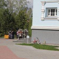 Велосипедик у стены :: Наталья Золотых-Сибирская