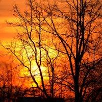 Весенний закат :: Дмитрий Боргер