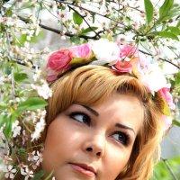 вишневый сад :: Елена ПаФОС