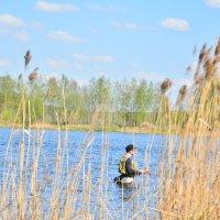 ловись рыбка... :: Светлана Прилуцких