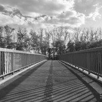 На мосту :: Алексей Мартынов