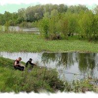 На рыбалку с утречка - красота для мужичка. :: Валентина ツ ღ✿ღ
