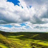 Кавказ :: Eduard Andreev