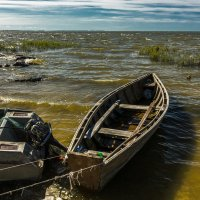 Перед рыбалкой :: Игорь Вишняков