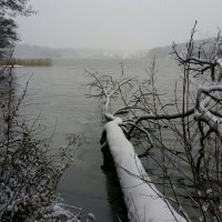 Тем же морозным зимним утром :: Anna L