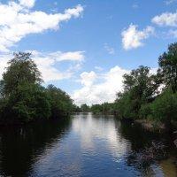 Река Цна. :: °•●Елена●•° Аникина♀