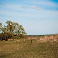 За 60км от Пензы :: Olga Photo