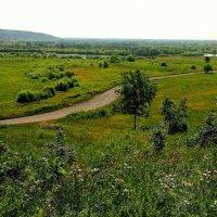 Дорога к реке :: Милла Корн