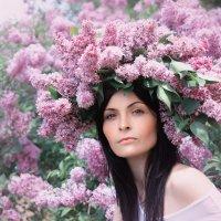 весна в цвету... :: Райская птица Бородина