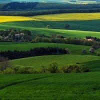 Красив мой край родной. :: Фомин Виталий