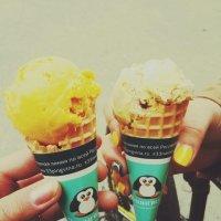 33 пингвина~ :: Nastya_Ulia ~