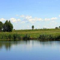 Летний день. :: оля san-alondra