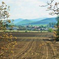 Карпаты :: Николай Танаев