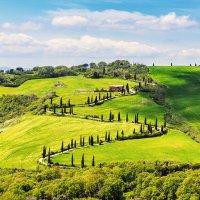 тосканские пейзажи :: Татьяна Бральнина